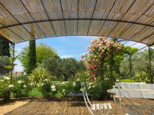 Eclairage-de-jardins-Paysagiste-Bedoin-Le-Barroux-Mallemort-du-comtat-Villes-sur-Auzon-Mormoiron-Beaumes-de-Venise-Carpentras-Vaucluse-pres-du-mont-ventoux