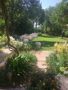 Sarl-Olivieri-et des jardins professionnels-Paysagiste-Bedoin---Le-Barroux---Mallemort-du-comtat---Villes-sur-Auzon-Mormoiron-a Beaumes-de-Venise-Carpentras-Vaucluse-pres-du-mont-ventoux