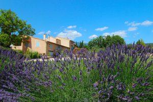 Sarl-Olivieri-jardin professionnel-Paysagiste-Bedoin---Le-Barroux---Mallemort-du-comtat---Villes-sur-Auzon-Mormoiron-a Beaumes-de-Venise- a Carpentras-Vaucluse-pres-du-mont-ventoux