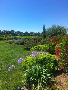 Sarl-Olivieri-jardin professionnel pour-les-jardins-Paysagiste-Bedoin---Le-Barroux---Mallemort-du-comtat---Villes-sur-Auzon-Mormoiron-a Beaumes-de-Venise-Carpentras-Vaucluse-pres-du-mont-ventoux