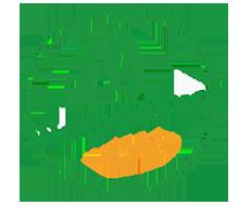 contact Paysagiste à Bedoin jardinier- Le Barroux - Mallemort du comtat - Villes sur Auzon - Mormoiron - Beaumes de Venise - Carpentras - Vaucluse - pres du mont ventoux
