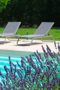 Sarl-Olivieri-pour-les-jardins-Paysagiste-Bedoin-Le-Barroux-Mallemort-du-comtat-villes-sur-Auzon-Mormoiron-Beaumes-de-Venise-Carpentras-Vaucluse-pres-du-mont-ventoux