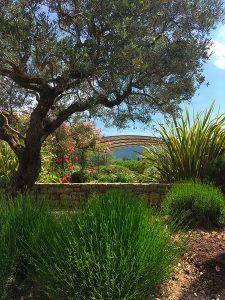 la Sarl-Olivieri-pour-les-jardins-Paysagiste-Bedoin-a Le-Barroux-a Mallemort-du-comtat-villes-sur-Auzon-Mormoiron-Beaumes-de-Venise-Carpentras-Vaucluse-pres-du-mont-ventoux