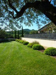 engazonnement Sarl Olivieri jardin Paysagiste Bedoin - Flassan - Crillon le brave - Saint Pierre de Vassols - Modene - Caromb - Mazan Vaucluse et plantation